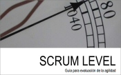 Scrum Level