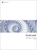 Scrum level th.jpg